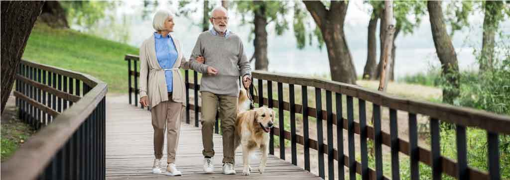 Senior couple walking their dog over park bridge